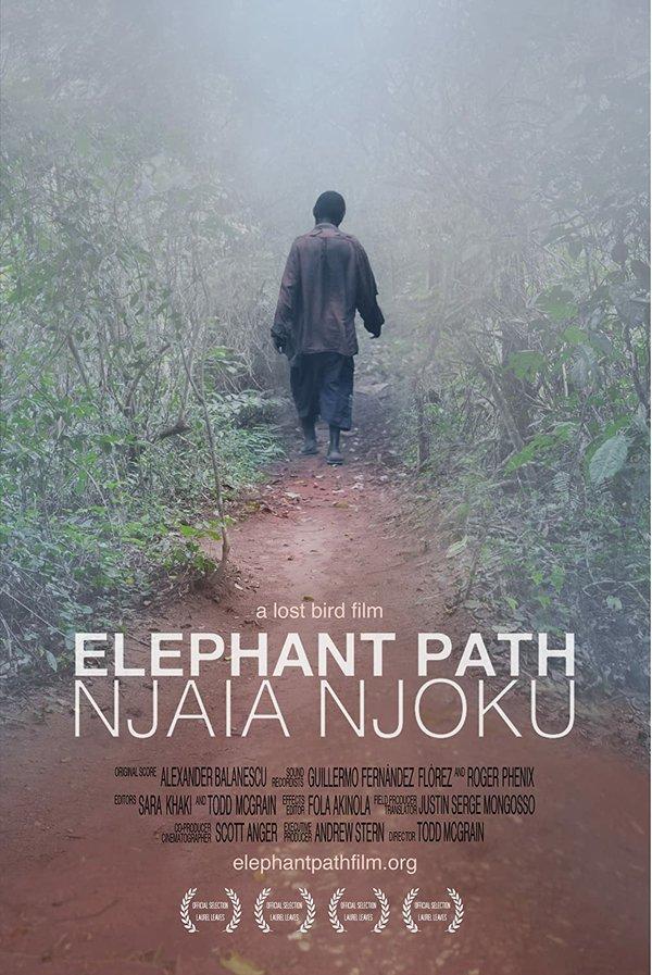 elephantpath.jpg